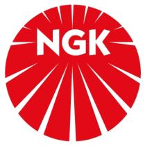 VARIABLE IC 01  Ngk